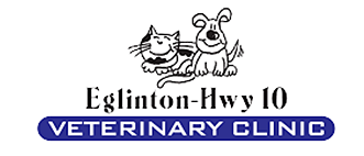 Eglinton-Hwy 10 Mississauga Animal Hospital