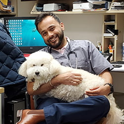 Veterinary Clinic Mississauga